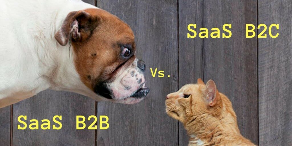 SaaS B2B vs SaaS B2C - Differences